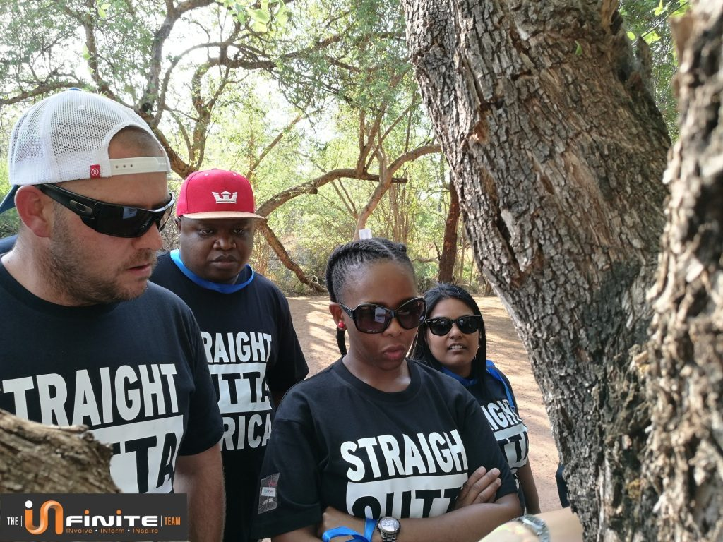 Team building near Pretoria